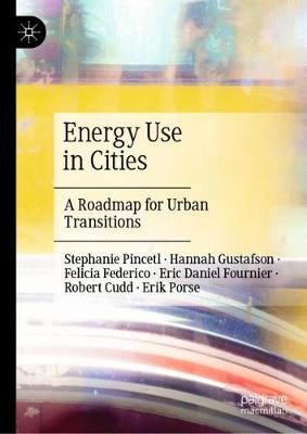 Energy Use in Cities: A Roadmap for Urban Transitions