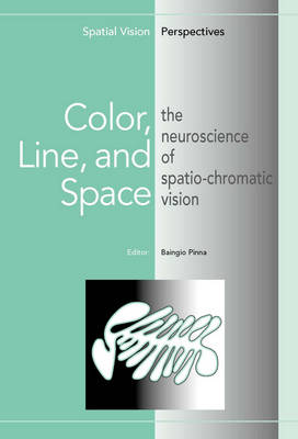 Color Line & Space The Neuroscience