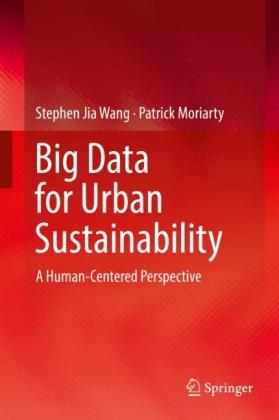 Big Data for Urban Sustainability: A Human-Centered Perspective