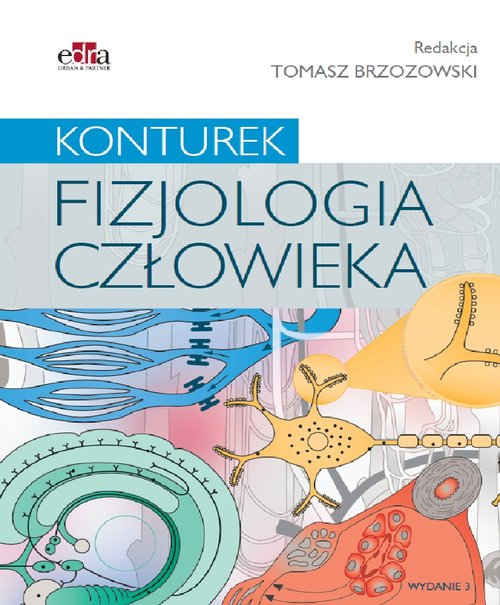 Fizjologia człowieka. Konturek Cover