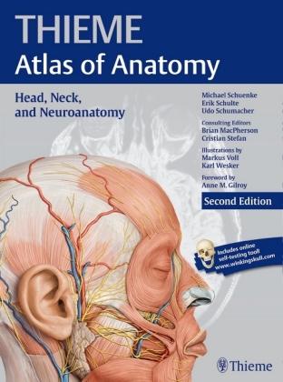 Head, Neck, and Neuroanatomy (Thieme.. Cover