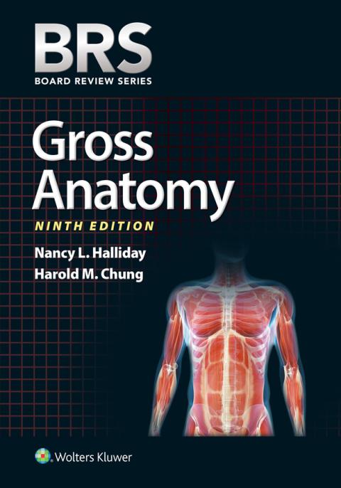 BRS Gross Anatomy ebook Cover