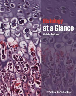 Histology at a Glance