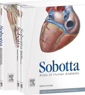 Sobotta Atlas of Human Anatomy 3 vols.. Cover