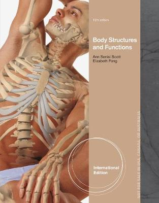 the basic functions of international bodies