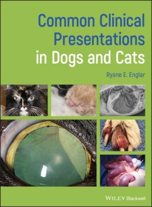 Common Clinical Presentations in Dogs and Cats