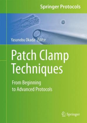Patch Clamp Techniques: From Beginning to Advanced Protocols
