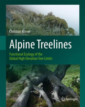 Alpine Treelines: Functional Ecology of the Global High Elevation Tree Limits